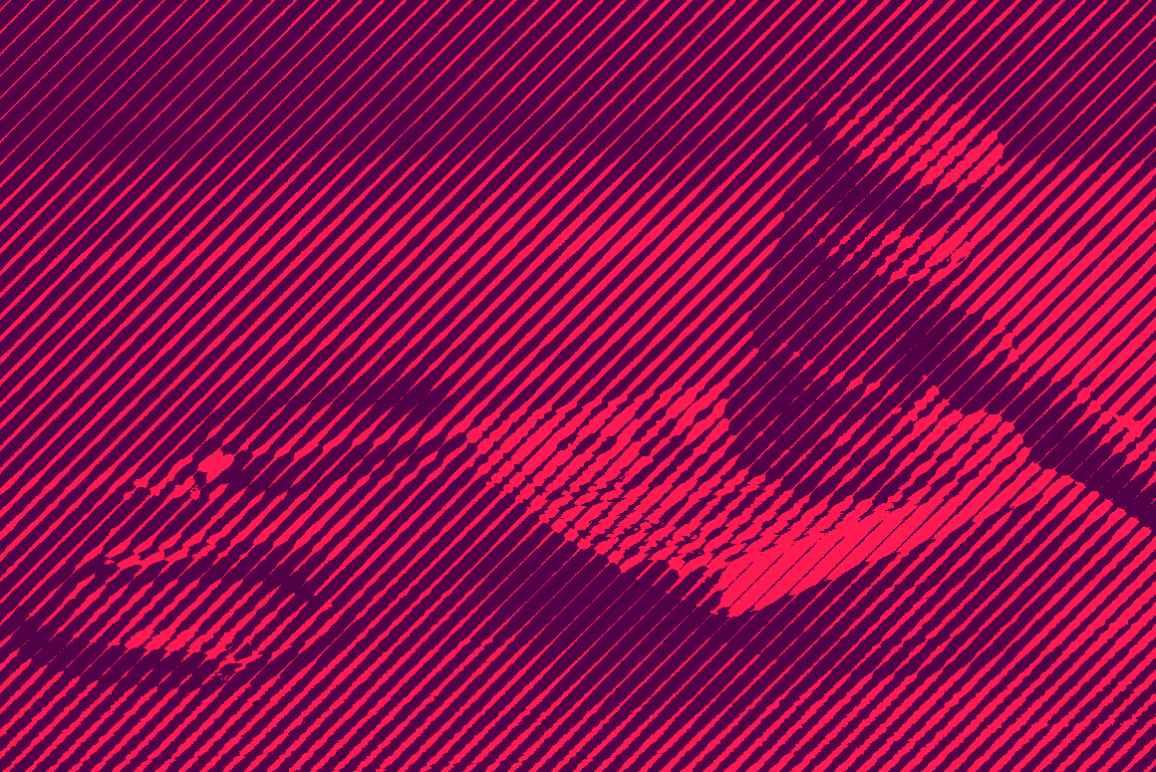 money bail image