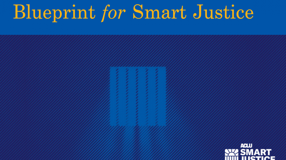 Texas blueprint for smart justice aclu of texas malvernweather Choice Image