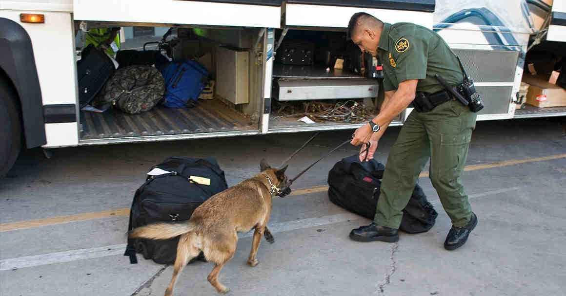 Border agent on bus